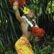 Stock Photo: Hawaiian hula danced by a teenage girl