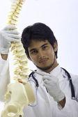 Docteur de chiropraxie — Photo