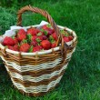 Fresh ripe red strawberry — Stock Photo
