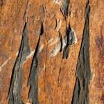 Shale stone — Stock Photo #5101287