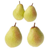 Four pears — Stock Photo