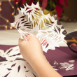 Paper Snowflakes — Stock Photo #4511191