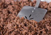 Cooked Ground Beef — Stock Photo