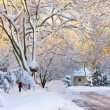 Snowy American Neighborhood — Stock fotografie