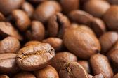 Coffee Beans Closeup — Stock Photo