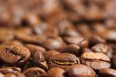Kahve çekirdekleri portre — Stok fotoğraf