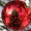 Bauble on Christmas Tree with reflection — Stock Photo #4281227