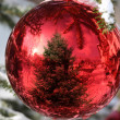 Bauble on Christmas Tree with reflection — Stock Photo