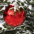Red Christmas decorations — Stock Photo #4291369