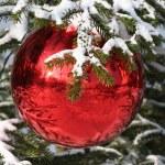 Christmas time — Stock Photo #4291985