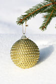 Christmas bauble on christmas tree — Photo