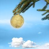 Golden bauble on tree — Stock Photo