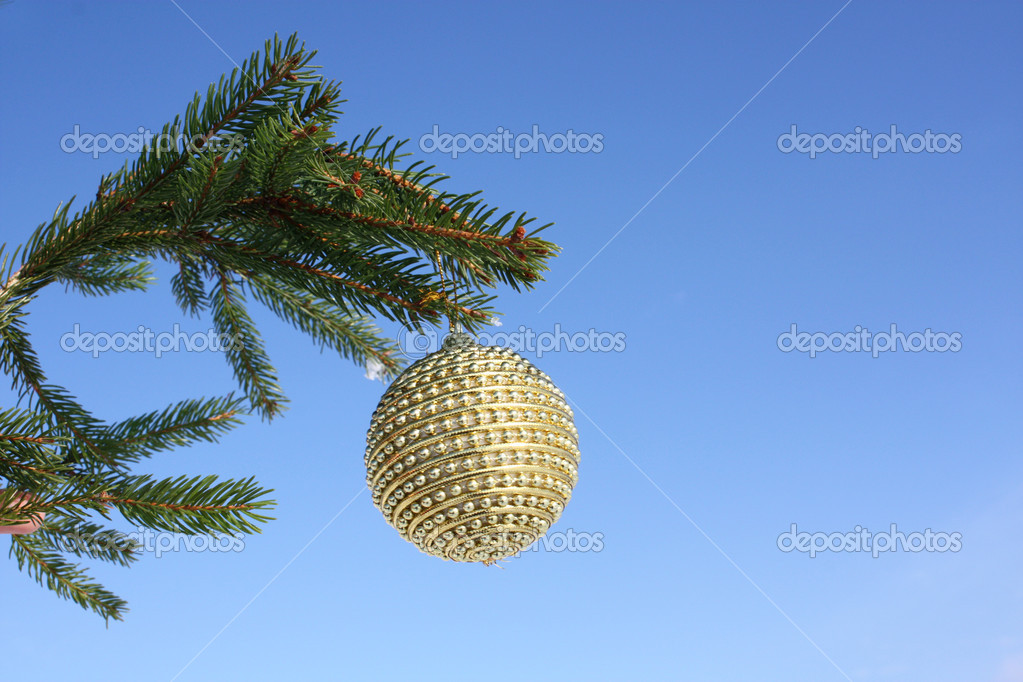 Christmas bauble on christmas tree  Stock Photo #4291629