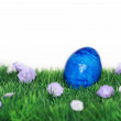 Blue painted Easter egg — Stock Photo
