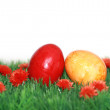 Beautiful Easter motive — Stock Photo #5318161