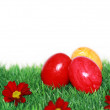 Beautiful Easter motive — Stock Photo
