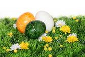 Ovos de páscoa coloridos — Foto Stock