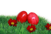 Red Easter eggs and red flowers — Stock Photo