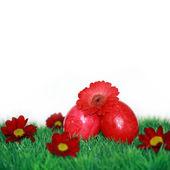 Movente rosso uovo di pasqua — Foto Stock