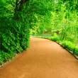 Winding path — Stock Photo #5185815