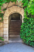Old garden gate — Stock Photo