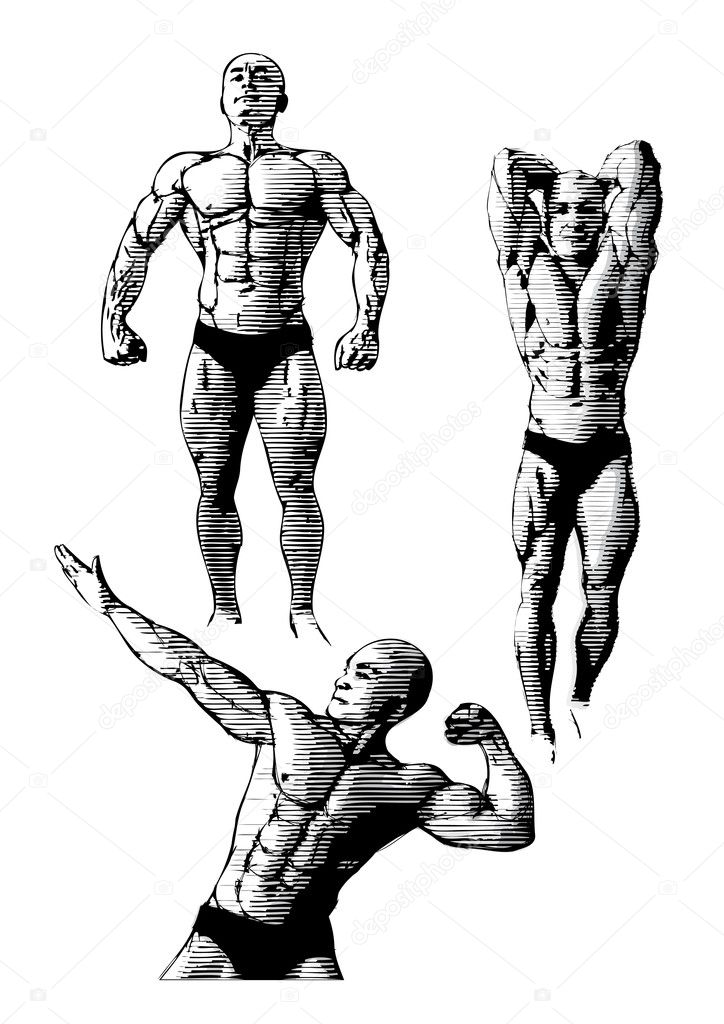 Sketching of the bodybuiders  Stock Vector #4093000
