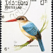 Stork-billed kingfisher bird stamp. - Stock Photo