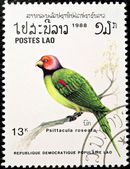 Blossom-headed Parakeet bird stamp. — Stock Photo