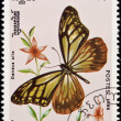 Stock Photo: Stamp, butterfly and flower.
