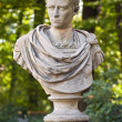 Roman emperor Caligula. — Stock Photo