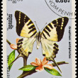 Stamp, butterfly and flower. - Stock Photo