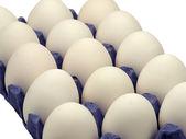 Dozen eggs. — Stock Photo