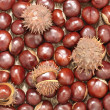 Chestnuts.Background. - Stock Photo