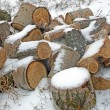Pile of fire wood in winter. - Stock Photo
