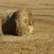 Stock Photo: Stack of hay on field.