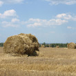 Stack of hay. — Stock Photo #5055477