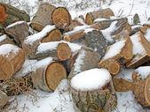 Stapel brandhout in de winter. — Foto de Stock