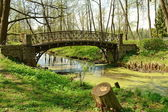 The old bridge in park — Stock Photo