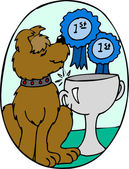 Dog Wins 1st Place — Stock Photo