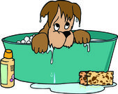 Dog Bathing — Stock Photo