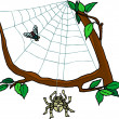 Stock Photo: Spider & Web