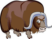 Musk Ox — Stock Vector