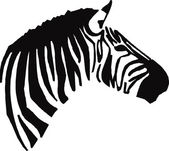 ZEBRA HEAD — Stock Vector