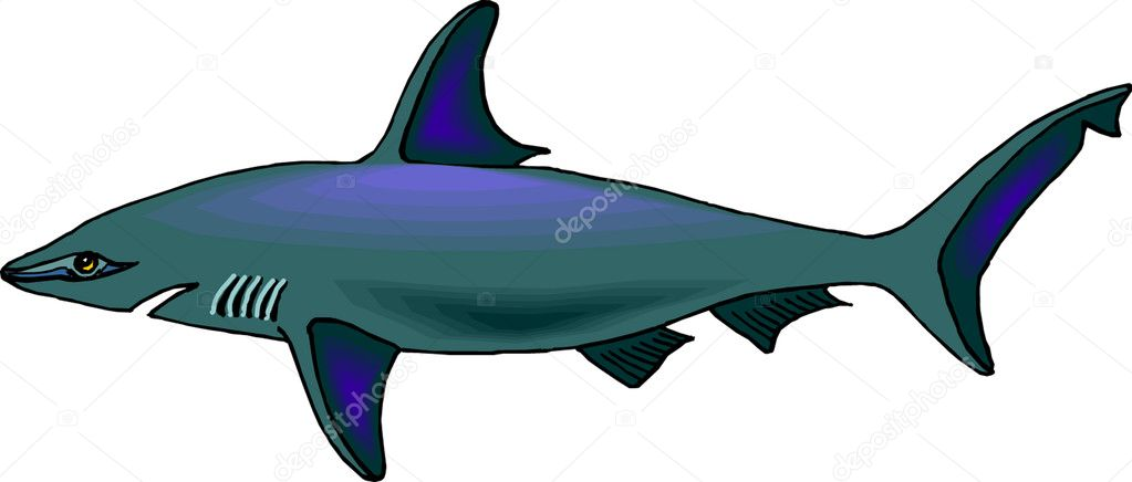 Shark  — Stock Vector #4359601