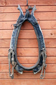 Old collar for a horse — Stock Photo