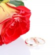 Two wedding rings with a fresh red rose as wedding concept — Stock Photo #4805845