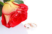 Two wedding rings with a fresh red rose as wedding concept — Stock Photo