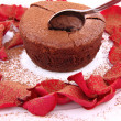 Chocolate souffle — Stock Photo #4796404