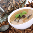 Mushroom soup and dried mushrooms — Stock Photo