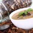 Mushroom soup and dried mushrooms — Foto de Stock